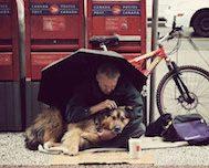 15 Fotoğrafla Sokakta Yaşayan Evsiz İnsanlar ve Onların En Sadık Dostları.. Köpekler