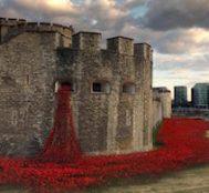 1. Dünya Savaşı'nın Anısına Londra Kalesi Etrafına 888,246 Adet Gelincik Dikildi.. Ortaya Çıkan Manzaraysa Büyüleyici!