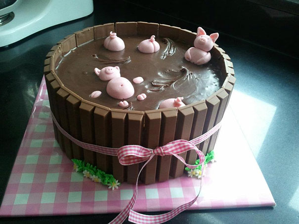 cikolata-domuz