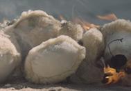 Geriye Sar: Savaş Çocuklarının Dramını 2 Dakikaya Sığdıran Savaş Karşıtı Kampanya Filmi