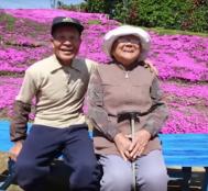 Görme Engelli Eşi Koklayabilsin Diye 20 Yılını Bu Çiçek Bahçesine Adayan Adam