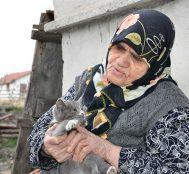 Kastamonulu Münevver Nine Bakımını Üstlendiği Kediler Aç Kalmasın Diye Köyünü Terketmiyor