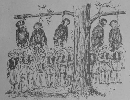 maymun-idamı