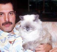 Bohemian Rhapsody'i İzlemeden Önce Freddie Mercury Hakkında Bilmeniz Gereken 10 Şey