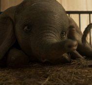 Disney'in Dumbo'su Tim Burton Yönetmenliğinde Yakında Sinemalarda – Yeni Fragman Yayınlandı